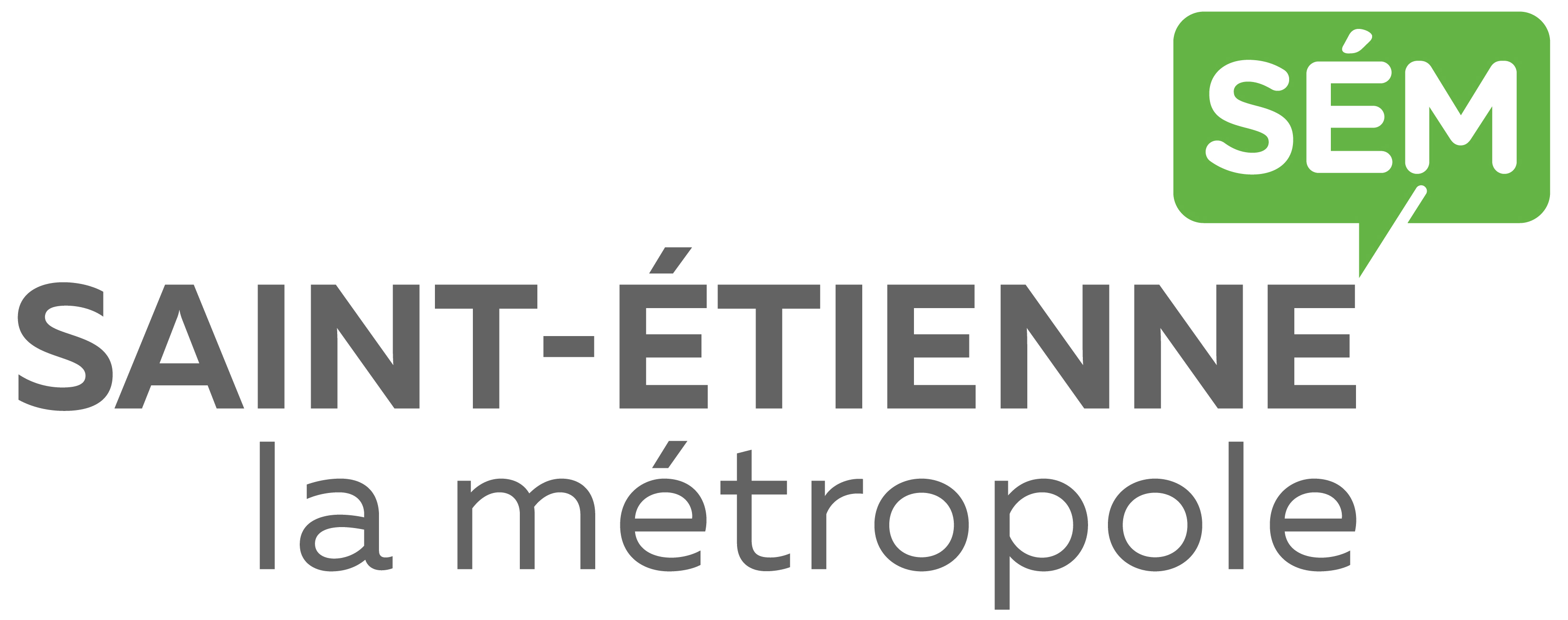 Saint-Etienne Métropole